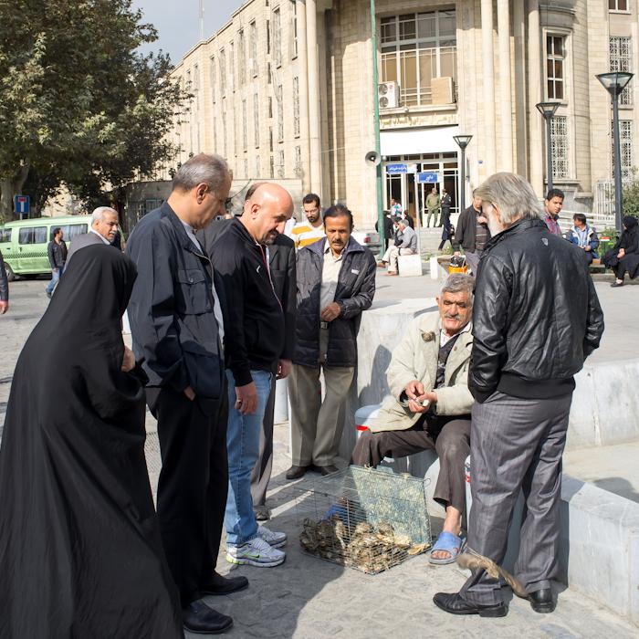 Iran_26c